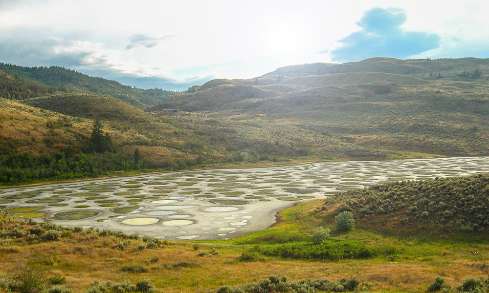 a wide shot of the Spotted Lake in Canada, a briny lake in summer